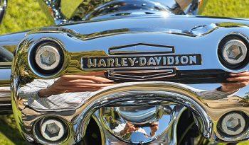 HARLEY-DAVIDSON-SOFTAIL-DELUXE full